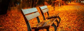 fit herfst
